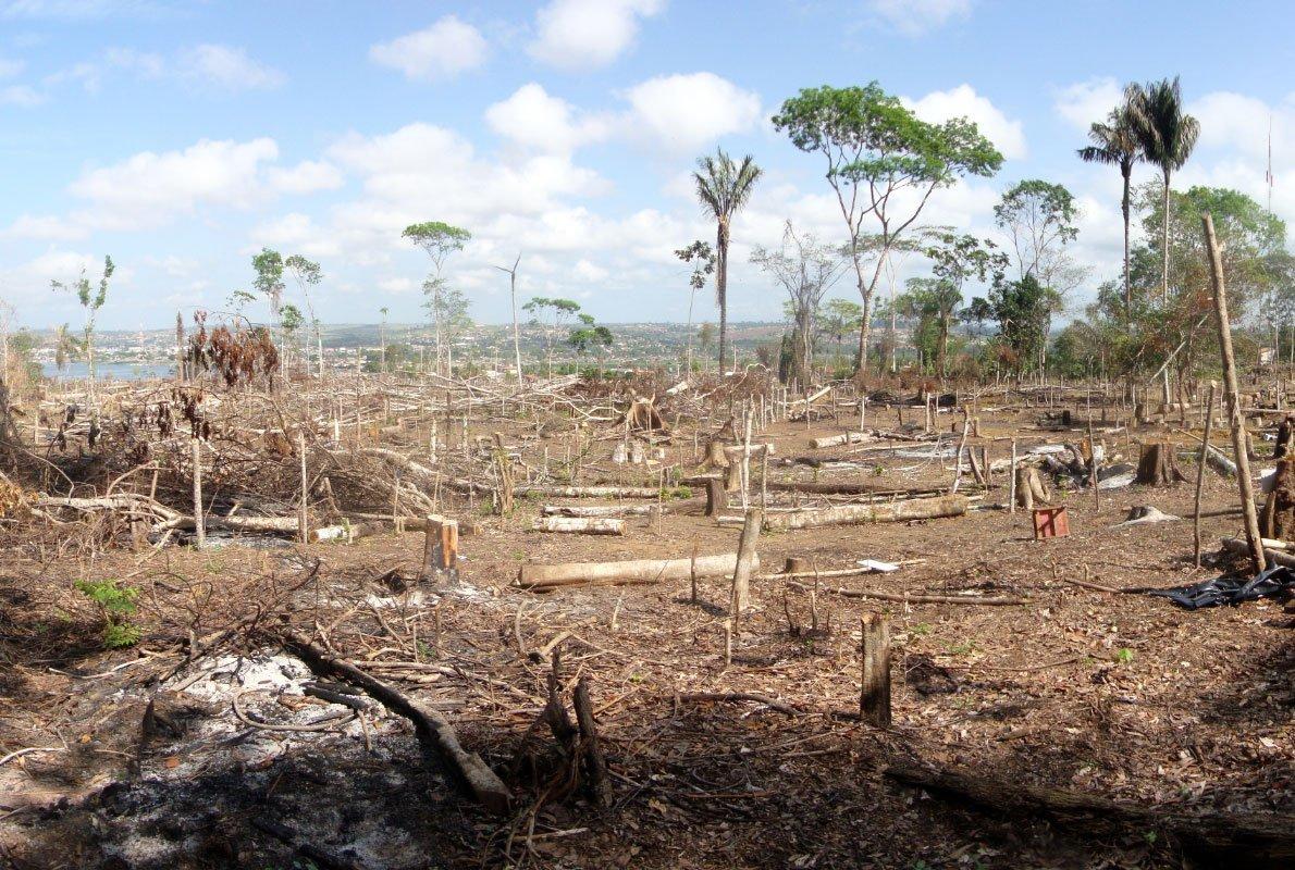 Area di disboscamento illegale nella Foresta Amazzonica, Brasile – Antropocene