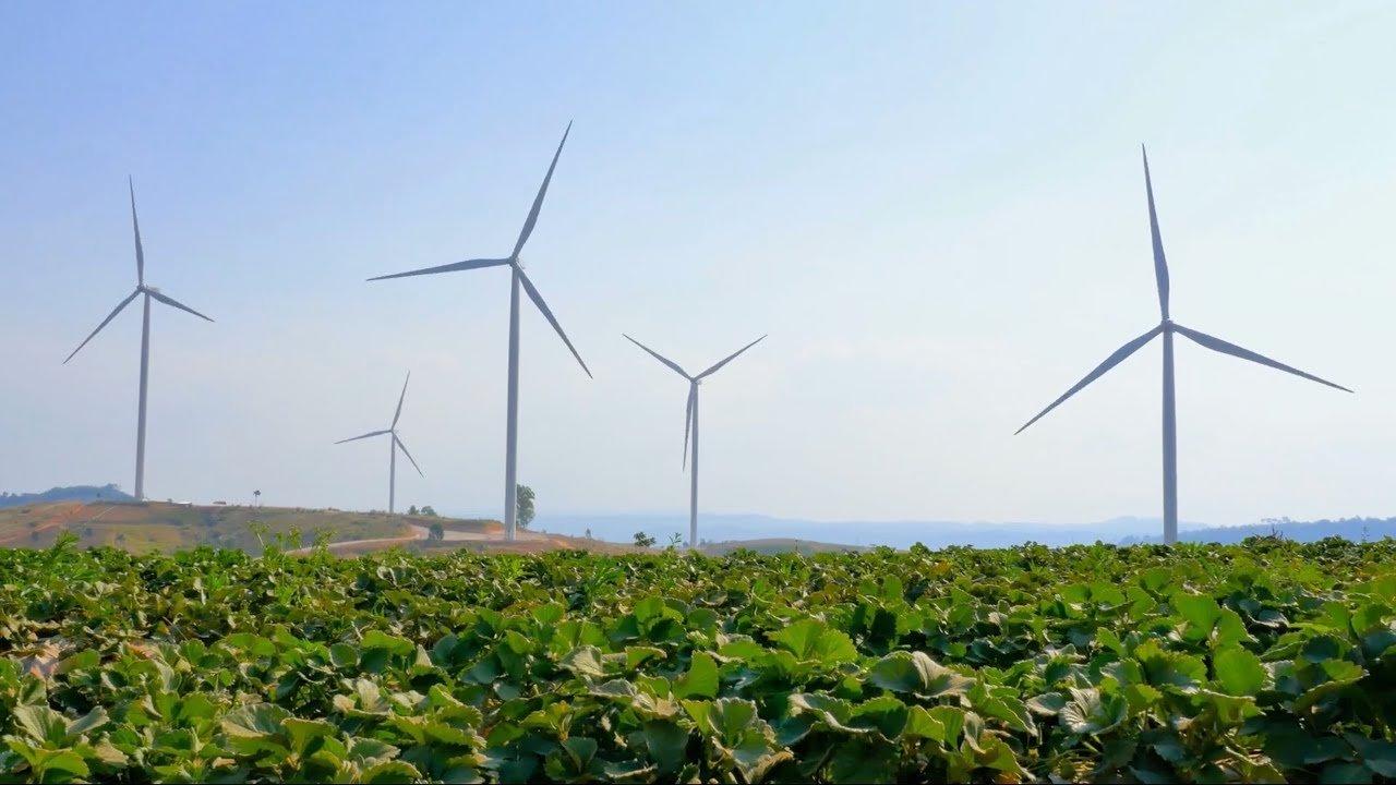 Green Pea e l'energia